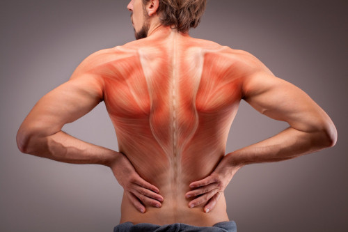 Muscular weakness can be the cause of back pain